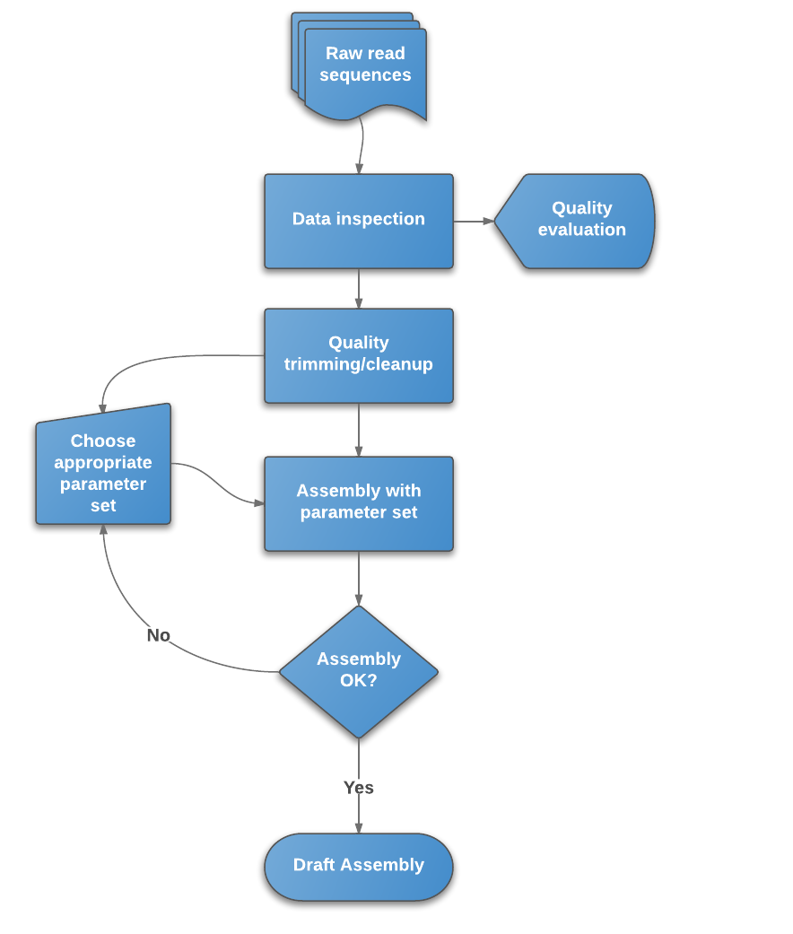 De Novo Genome Assembly For Illumina Data Bioinformatics Documentation