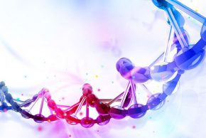Genomics Virtual Laboratory