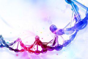 Genomics Virtual Laboratory