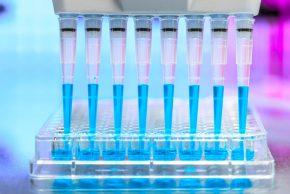 Melbourne Genomics Health Alliance (Melbourne Genomics)