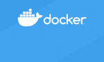 Containerised Bioinformatics: Docker and other tools for reproducible analysis