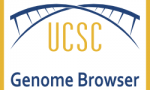 UCSC Genome Browser: a full-featured genomic data system
